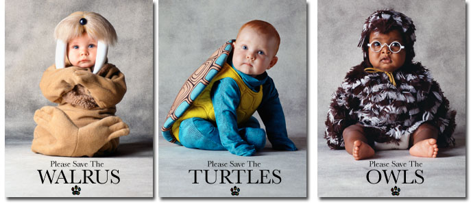 Tom Arma's Please Save the Animals series of posters which started the costume babies craze around the world. Tom Arma renowned American baby photographer designed these three, walrus, turtle, and owl as well as over 200 other baby costumes.